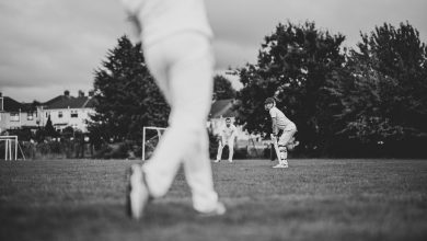 Cricket Health Benefits You Didn't Know