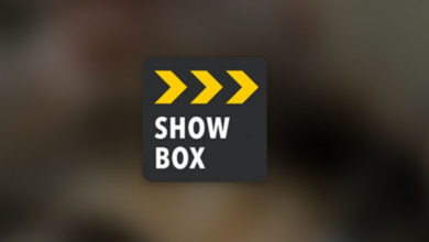 Photo of Here's Everything You Need To Know About Showbox APK