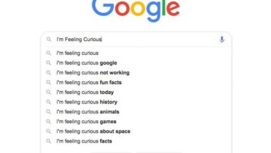 Photo of How does Google's I'm feeling curious work?