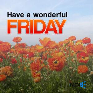 Have a wonderful Friday.