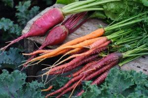 6 Season Root Vegetables